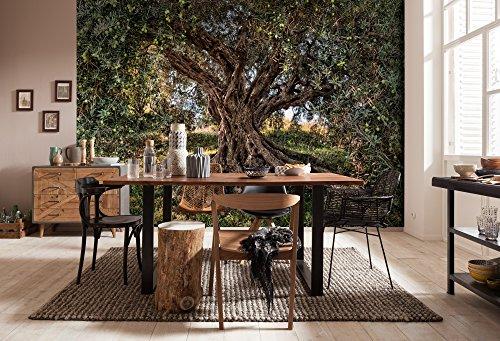 """Komar Fototapete""""Olive Tree"""", 368 x 254 cm, 8 Teile - 1"""