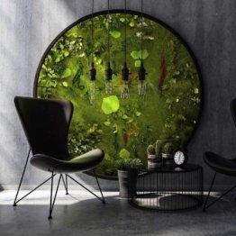 MOOS MOOS MANUFAKTUR Großes Moosbild Rund - Nature Eye London No. 2 - Durchmesser Ø 200cm - Wandbild Dschungel auf Holzfaserplatte anthrazit