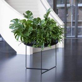 XXL Design Pflanzschale Blumenkübel für aussen/Metall schwarz / 75x75x65cm