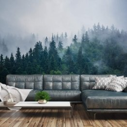 Fototapete Wald Nebel 240 x 360 cm Vlies