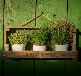 Hochwertiges Blumen- & Pflanzenregal I Gartenregal aus Holz für Außen & Innen I Maße (B x T x H): 75 x 18,5 x 35,5cm