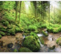 murando Fototapete Wald 400x280 cm Vlies