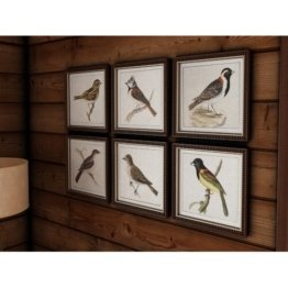6-tlg. Gerahmtes Poster-Set Frühlingsvögel Union Rustic