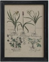 Chic Antique Bild mit Wiesenblumen Blumen Rahmen schwarz 33x43 cm