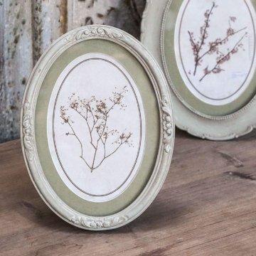 Chic Antique Denmark Gerahmtes Bild Alt Franz. Rahmen Pflanzendruck Oval Patinagrün Creme 19cm